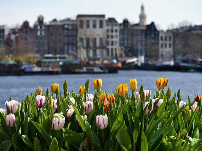 Precios en Amsterdam